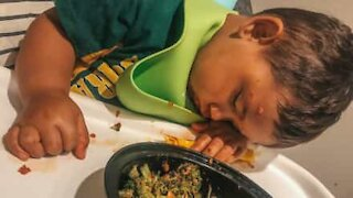 Toddler falls asleep during mealtime
