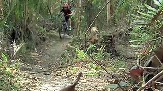 Cyclists at Pinehurst Mountain Bike Trail in Greenacres upset after tree removal - Video
