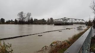 Skagit River Swells to Major Flood Levels - Video
