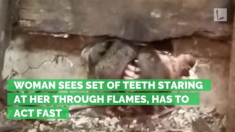 Woman Sees Set of Teeth Staring at Her Through Flames, Has to Act Fast