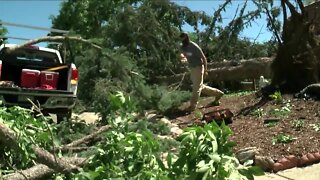 Thousands still without power as clean-up from Saturday's storm continues