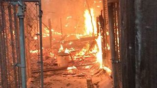 Wildfires Destroy Dog Kennels at Glen Ellen Business - Video