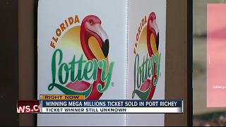 Mega Millions winner in Port Richey - Video