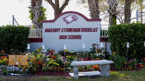 Parkland: One Year Later — A Newsy Special Report