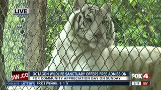 Octagon Wildlife Sanctuary holds community appreciation day Sunday