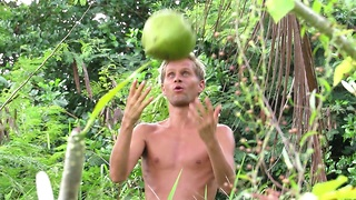 One coconut, long stick and hungry man , Koh Phangan, Thailand  - Video