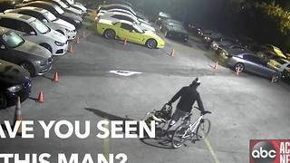 Tampa detectives need help identifying Cars of Tampa auto burglary suspect - Video