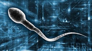 Researchers are equipping sperm with tiny iron suits to turn them into cancer-fighting robots. Wait, what? - Video