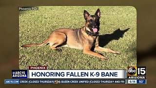 Phoenix police, community gather to honor fallen K-9 Bane - Video