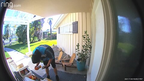 Amazon delivery driver reacts to snacks left by homeowner