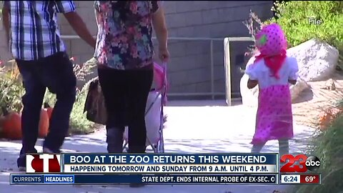 Boo at the Zoo Returns This Weekend