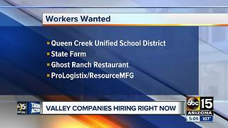 Several Valley companies now hiring - Video