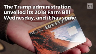 Trump Admin Says Work Is Necessary For Food Stamps - Video