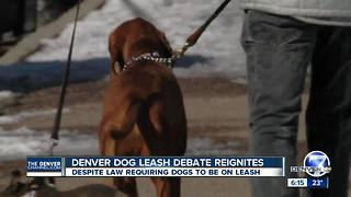 Denver dog leash debate reignites, despite law requiring dogs to be on leash - Video