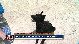 Hillsborough cracking down on dog barking - Video