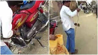 Man pulls a snake from inside a motorcycle