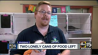 Valley rescue in desperate need of cat food donations - Video