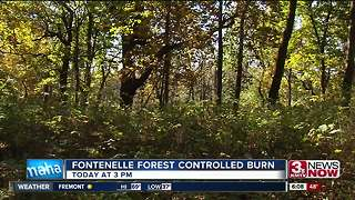 Fontenelle Forest to have controlled burn - Video