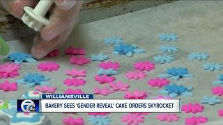 Gender reveal parties giving boost to local bakeries - Video