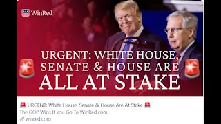 Desperate Dems! Atty's Wood/Powell say Trump won by 70% landslide