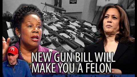 New Gun Bill Will Make You an Instant FELON