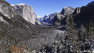 Veterans Get Free Lifetime Access To National Parks