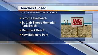 Several metro Detroit beaches closed due to high bacteria