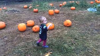 Little Girl Loves Her Pumpkin And All It's Flaws - Video