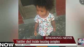 Police: 1-year-old girl struck by bullet after shots fired through door of Tampa home - Video