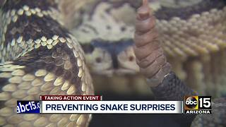 Valley braces for upcoming snake season - Video