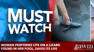 woman performs cpr on a lizard found in her pool, saves its life - Video
