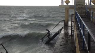 FURTHER FOOTAGE: This diehard is out for a 5km swim during Storm Ophelia - Video