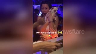 Tourist has amazing reaction to meeting dog in nightclub