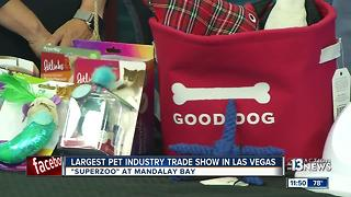 Superzoo trade show taking place in Las Vegas - Video