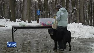 Easter Egg Hunt held for dogs - Video