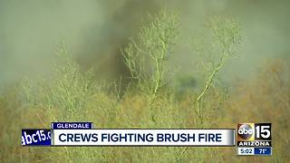 Firefighters letting Glendale brush fire burn itself out