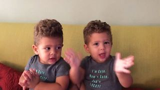 10 Reasons Why Twins Have The Most Fun - Video
