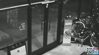 OVPD looking for bike thief from Christmas - Video