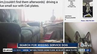 Owner of Husky that escaped 'doggie daycare' thinks she knows who has her missing dog - Video