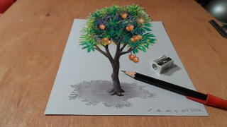 How to draw a 3D mango tree - Video