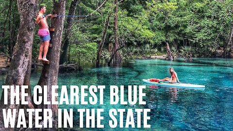 You Can Paddle Down This 4-Mile Sapphire Spring Run Near Tallahassee This Summer
