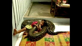 Kid Rides Giant Python - Video