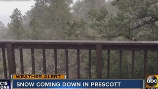 Snow comes down in northern Arizona as winter storm hits - Video