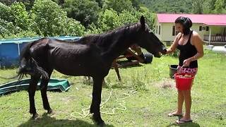 A neglected horse faces starvation. What this couple does next is incredible.