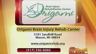 Origami Brain Injury Rehabilitation Center -12/23/16 - Video
