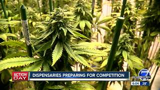 Colorado dispensaries preparing for competition - Video