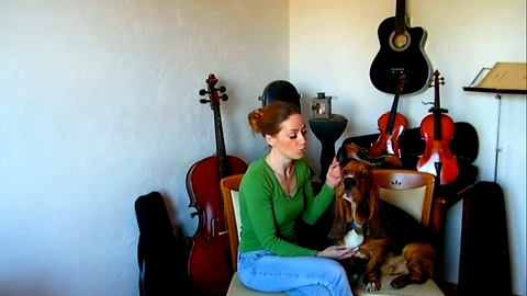 Basset Hound sings with her owner