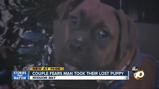 Couple fears man took their lost puppy - Video