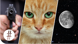 Random Numbers: Guns, Cats & the Moon