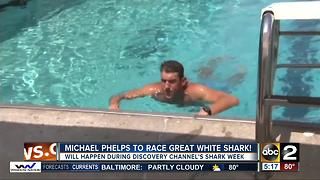 Michael Phelps jumps back into the water to race a great white shark - Video